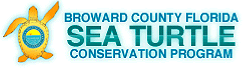 Broward County Sea Turtle Protection Program
